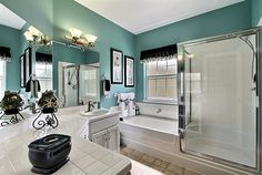 Color scheme idea for master bathroom.... Hmmm he just might like this one!!