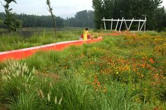 Gallery - Red Ribbon Park / Turenscape - 13