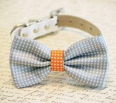 Gris et Orange Dog Bow Tie, points gris Polka, Animaux Accessoire, Cadeau danniversaire, amants de chien, accessoire pour animaux de mariage    •