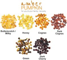 Olive Bean Child Amber Necklace amberpumpkin.com