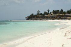 Tamarijn Aruba All Inclusive: Beach