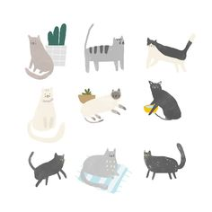 - Magic of Illustration - Katzen Art And Illustration, Illustration Inspiration, Graphic Design Illustration, Funny Paintings, Cat Background, Cat Drawing, Animal Drawings, Cat Art, Stickers