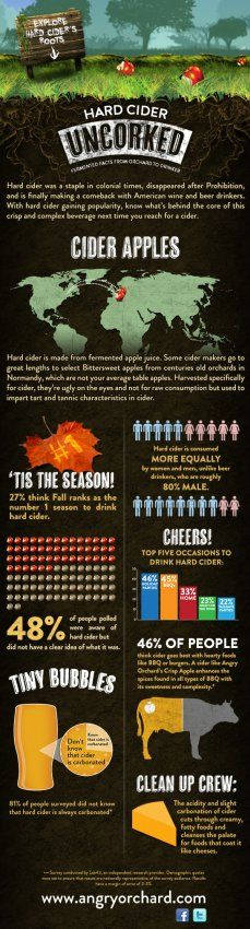 Infographic: Why You Should Be Drinking Hard Cider