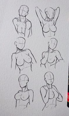 Body Base Drawing, Body Drawing Tutorial, Body Reference Drawing, Human Drawing, Art Reference Poses, Anatomy Sketches, Anime Drawings Sketches, Human Figure Sketches, Human Anatomy Art