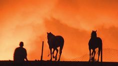 Crews Continue Battling 980-Acre Chino Brush Fire, Evacuations Lifted  April 19, 2015