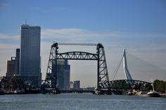 Brug Rotterdam (1)