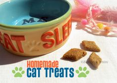 Homemade cat treats ~ healthy and yummy for your kitty! Homemade Cat Food, Homemade Products, Healthy Pets, Pet Treats, Diy Stuffed Animals, Dog Gifts, Pet Care, Dog Food Recipes, Cat Recipes
