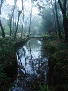 fairy tail experience mystical pena park sintra portugal 04 A Fairy Tale Experience: The Mystical Pena Park in Sintra, Portugal