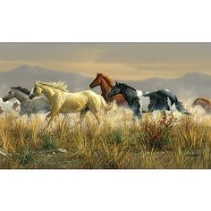 (99x164) Band of Thunder Horses Huge Wall Mural Art Print Poster by Poster Revolution, http://www.amazon.com/dp/B002U74LMY/ref=cm_sw_r_pi_dp_Ph.fsb0VC1E5S