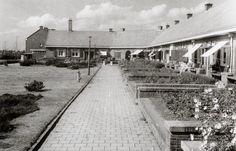 1956. View of the Kometensingel in Tuindorp Oostzaan neighborhood of Amsterdam-Noord. Photo Serc. #amsterdam #1956 #Kometensingel
