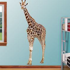 Giraffe - General Animal Graphics - Fathead photo animal wall decals - @Angelique Vernon