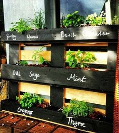 uses for old pallets to make an upright herb garden for the patio
