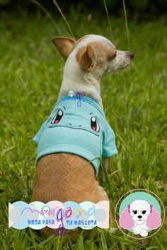 Mascota: Pancho Talla: 2  Estampado y color: Squirtle (acqua).  Fotografía: Tatiana Rodriguez Diseño: América García