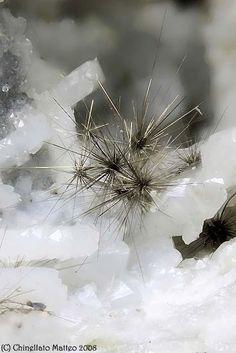 Millerite-Millerite is a nickel sulfide mineral  Ca' dei Ladri (Silla), Gaggio Montano, Bologna Province, Emilia-Romagna, Italy  Very nice 2.17 mm group of Millerite tuft