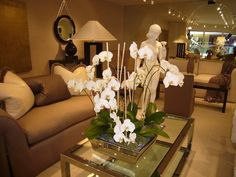 Lounge - Orchid Display