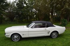 Ford Mustang convertible - 1966