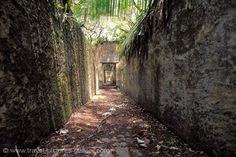 Pictures of French Guiana - Devil's Islands, Ile St. St Joseph, Central America, South America, Prison, Abandoned Places, Travel Pictures, Ecuador, Devil, Islands
