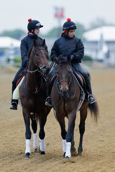 BALTIMORE, MD - MAY 15: Kentucky Derby winner Orb with exercise rider Jennifer Patterson up are lead off the track following a workout on the track in preparation for the 138th Preakness Stakes at Pimlico Race Course on May 15, 2013 in Baltimore, Maryland. (Photo by Rob Carr/Getty Images) Pimlico Race Track, Pimlico Race Course, Jennifer Patterson, Preakness Stakes, The Great Race, Derby Winners, Horse Supplies, Sport Of Kings, Thoroughbred Horse