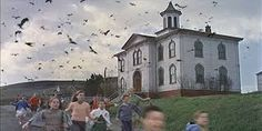 the birds - Google Search  Alfred Hitchcock at his best .