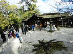 Toyokuni Shrine #Miz
