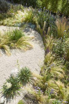 About our portfolio - Front garden and side garden in beach atmosphere. DESIGNED BY: Jacqueline Volker – www. Seaside Garden, Coastal Gardens, Beach Gardens, Small Gardens, Outdoor Gardens, Small Garden Statues, Small City Garden, Beach Landscape, Landscape Design