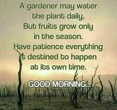 Happy Morning Quotes, Morning Inspirational Quotes, Morning Thoughts, Morning Greetings Quotes, Morning