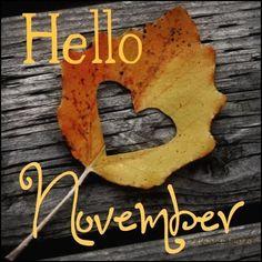 Hello the Month of November | Hello November