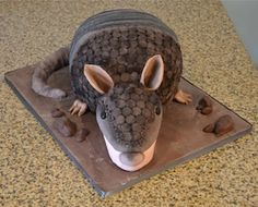 Sugarland Bleedin' Armadillo Cake  Cole can have this cake for his 29th bday