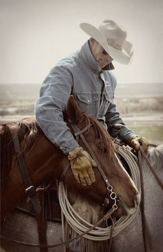 """You can get anything you want from a horse, if you just say please so they can understand. Show him some respect and let him know you will never hurt him or abandon him. Horses form an emotional bond with their humans and they can be hurt bad, just like we can."" From ""The Reluctant Cowboy"""