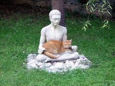 Mindfulness - Edelstenen &..... *Mindfulness-Precious Stones &.....  ~Meditatie met kat~ <3