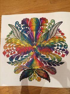 Rainbow Millie Marotta Adult Colouring Adultcoloringbook Tropicalwonderland Colouringin MillieMarotta
