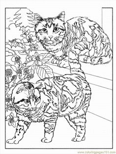 Cat1 (12) coloring page - Free Printable Coloring Pages