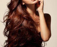 ... Chestnut Hair Colors on Pinterest   Hair Coloring, Chestnut Brown Hair