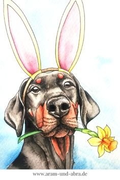 Illustration, Zeichnen, Aquarell, Ostern, Hund, Dobermann, Blume