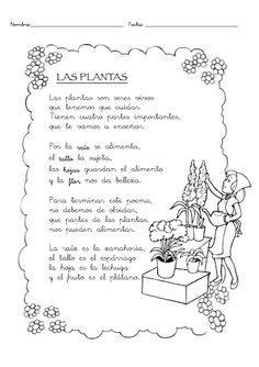 poesía para escolares Preschool Poems, Preschool Spanish, Learning Spanish For Kids, Spanish Teaching Resources, Science Week, Kindergarten Science, Teaching Science, Hands On Activities, Science Activities