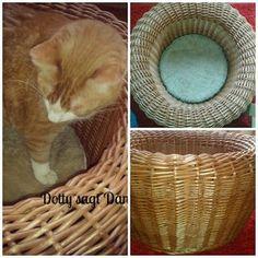 Ein Katzenbett von Otto.