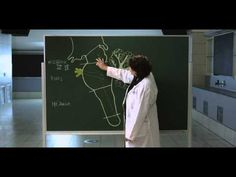 ▶ Overview of the Brainstem - UBC Flexible Learning - YouTube