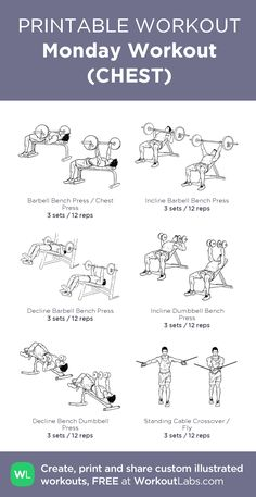 Workout plans, totally exciting ways to shed body fat with one daily fitness exercise plan, suggestion number 9333548767 - one effective bit of workout concept. Gym Workouts For Men, Weight Training Workouts, Gym Workout Tips, Dumbbell Workout, Arm Workout Men, Training Plan, Chest And Back Workout, Chest Workout Routine, Chest Workouts