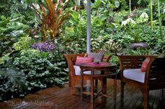 Photo Gallery | Tabu Accomodation- Cairns, Queensland, Australia