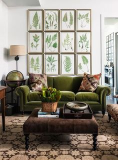 Framed ferns, a velvet green sofa and brown velvet coffee table with a patterned carpet | Image via centsationalgirl.com
