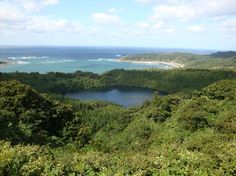 You can see the see of Japan over the forest. #Hachibohdai in Oga peninsula,Akita,Japan  @八望台1