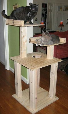 Home Decor Ideas: Homemade Cat Tree I like this and bet my cat would too. Could cover the bottom legs with carpet remnants for scratching posts, too. Cat Tree Plans, Carpet Remnants, Diy Cat Tree, Cat Scratching Post, Cat Room, Cat Condo, Animal Projects, Buy A Cat, Cat Furniture