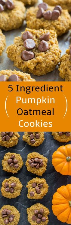 Looking for a easy pumpkin recipe? This is it! These Pumpkin Oatmeal Cookies are made with just 5 ingredients! Add chocolate chips on top of the cookies to take it to the next level of yum! Recipe is Sugar Free, using Maple Syrup instead.