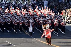 Bucky leads the band at the Tournament of Roses Parade.  Bucky!!!!!!!!!!!!!!!!!!!!!!!!!!!!!!!!