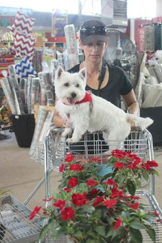 Enjoy your garden stroll at The Barn Nursery, Chattanooga, Tn 061914  We are certainly dog-friendly!