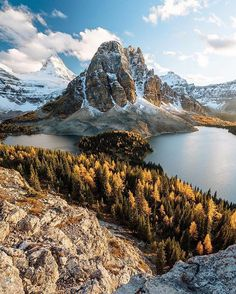 Mount Assiniboine Provincial Park, BC, Canada ?? | Photography by © Stevin Tuchiwsky (@stevint) _______________________________________________________________________________________________________________________________ #britishcolumbia #canada #mountain #mtassiniboine #provincialpark #nature #lakes #ponds #water #mountains #clouds #cloud #cloudporn #forest #forests #tree #trees #naturegram #mothernature