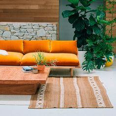 'The Dreamer'  This is the couch we've always dreamed of.   A signature bentwood curve gives lightness and easy lines to this soft and  comfortable couch.  Made from recycled or sustainably sourced Australian hardwood.  Finished in natural timber oil.  The covers are 100% cotton velvet and easily removable - so you can turn  your midnight blue sofa into rose pink if you're in the mood for it. Please  email us for interstate or international shipping quotes  info@popandscott.com  Standard…