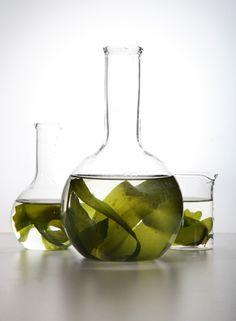 Detoxifying Seaweed Face Mask Recipe: Seaweed Wrap & Face Mask Recipe + Skin Benefits