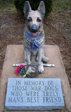 In memory of those war dogs who were truly man's best friend . I so love dogs Military Working Dogs, Military Dogs, Police Dogs, I Love Dogs, Puppy Love, Mans Best Friend, Best Friends, Friend 2, Animals And Pets