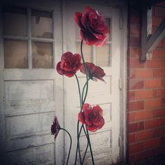 Tall rose bush